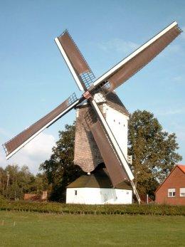 Foto van Kaasstrooimolen, Heist-op-den-Berg, Foto: Marcel Heirman   Database Belgische molens