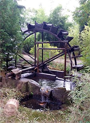 Foto van Scheprad, Retie, Foto: Pieter Zuijkerbuijk (Noord-Brabant), 05.10.2016 | Database Belgische molens