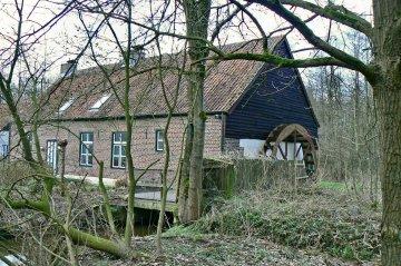 Foto van Berenheidemolen<br />Achterste Molen<br />Slagmolen, Meeuwen (Oudsbergen), Foto: Jaak Paredis, Bree, 15.03.2008 | Database Belgische molens