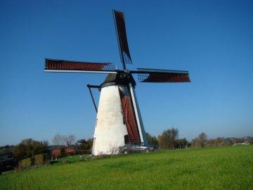 Foto van Verrebeekmolen, Opbrakel (Brakel), Foto: Wouter Peerlings, 14.10.2007   Database Belgische molens