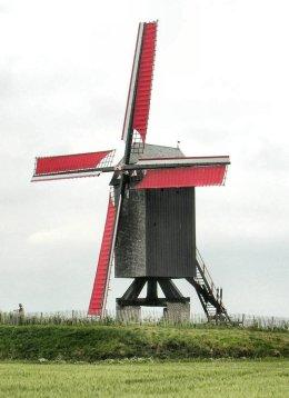 Foto van Molen van Wannegem<br />Grote Molen<br />Houtavemolen<br />Schietsjampettermolen, Wannegem-Lede (Kruishoutem), Foto: Donald Vandenbulcke, Staden  | Database Belgische molens