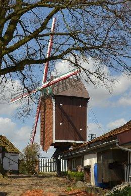 Foto van Moedermeule, Gelrode (Aarschot), Foto: Edwin Thys, 21.04.2013   Database Belgische molens