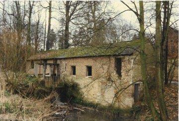 Foto van <p>Kasteelmolen<br />Watermolen van Leefdaal</p>, Leefdaal (Bertem), Foto: Niels Wennekes | Database Belgische molens
