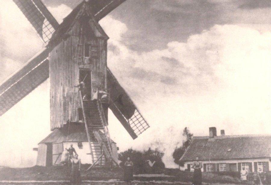 Foto van <p>Keiaardmolen<br />Keyaertmolen<br />Kayaardmolen<br />Kayaartmolen</p>, Staden, Prentkaart 1910 (coll. Donald Vandenbulcke, Staden)   Database Belgische molens